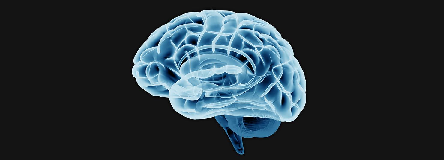 The Neuro Files: Innovations in Brain-Based Trauma Treatment